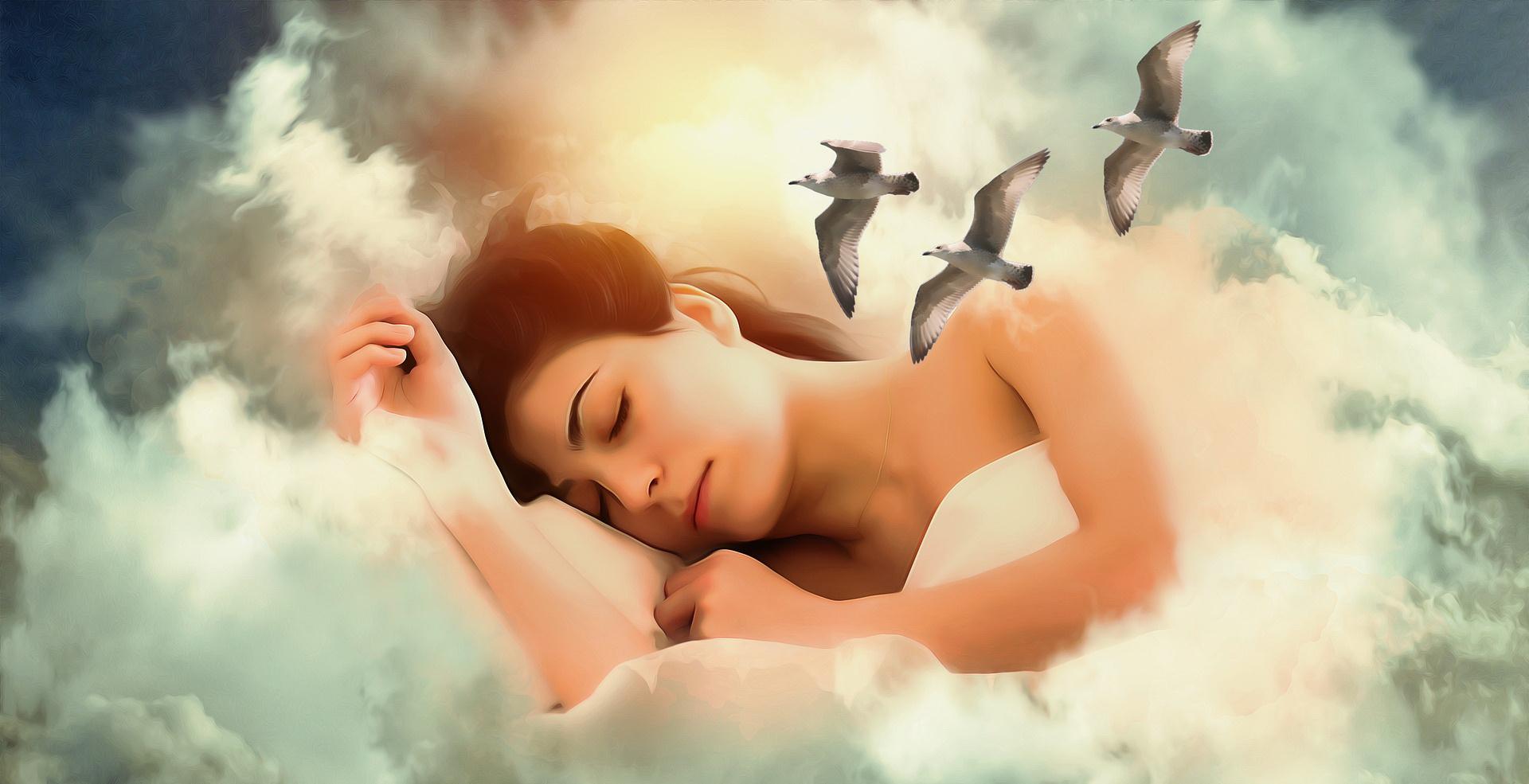 L'art de la rêverie pour rester humains 13