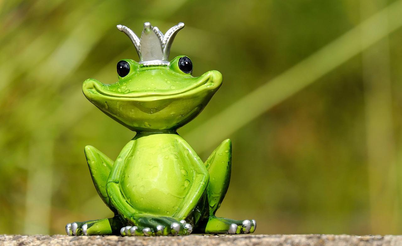 Rsultat de recherche dimages pour une grenouille