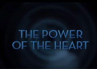 L'infinie puissance du coeur (documentaire) 14